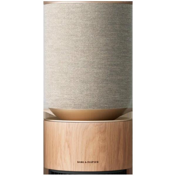 Домашняя аудиосистема BANG & OLUFSEN BeoSound Balance (1200485)